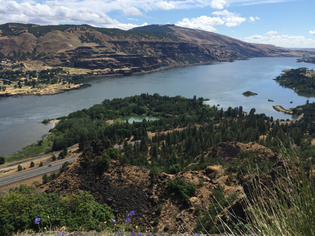 Rowena Viewpoint