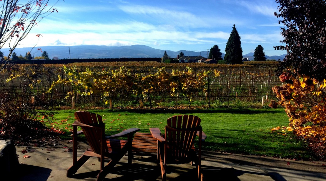 Mt. Hood Winery View