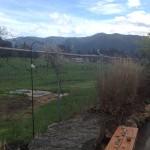 Back patio - Backwoods Brewing Company, Carson, WA
